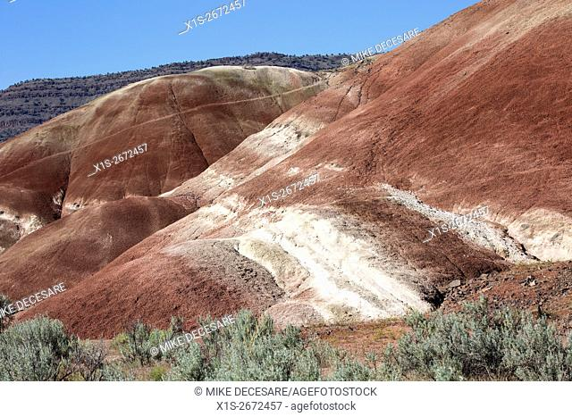 Desert vegetation in the high desert anchors the bands of color in the clay and volcanic ash of the Painted Hills in East Central Oregon