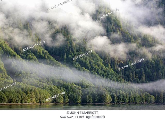Coastal scene in the Great Bear Rainforest, British Columbia, Canada