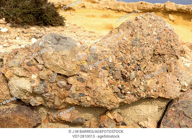 Conglomerate is a clastic sedimentary rock composed of rounded clasts (pudding stone). This sample comes from Cabo de Gata, Almeria, Andalusia, Spain