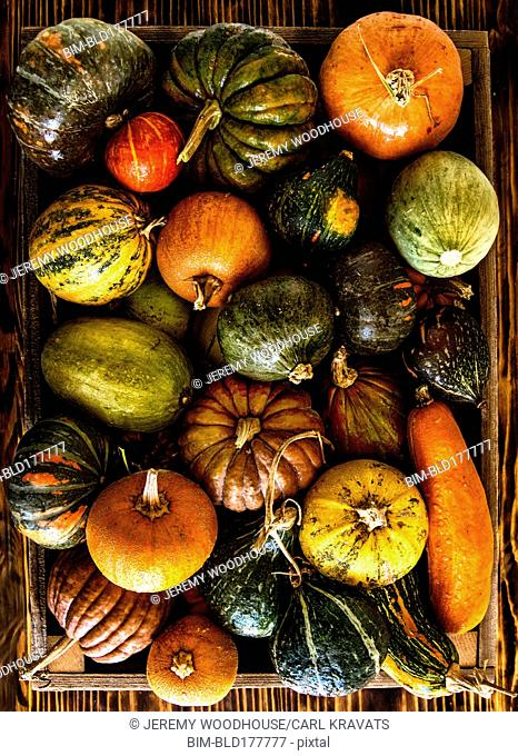 Crate of pumpkins and squash