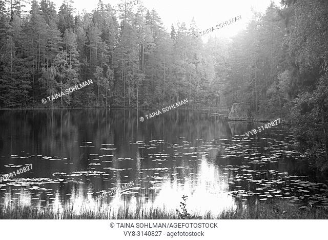 Magic light over small rural forest lake, black and white image