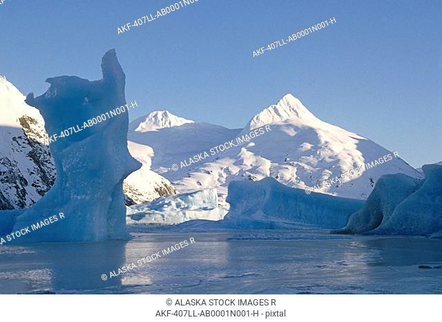 Icebergs Portage Glacier Winter SC AK