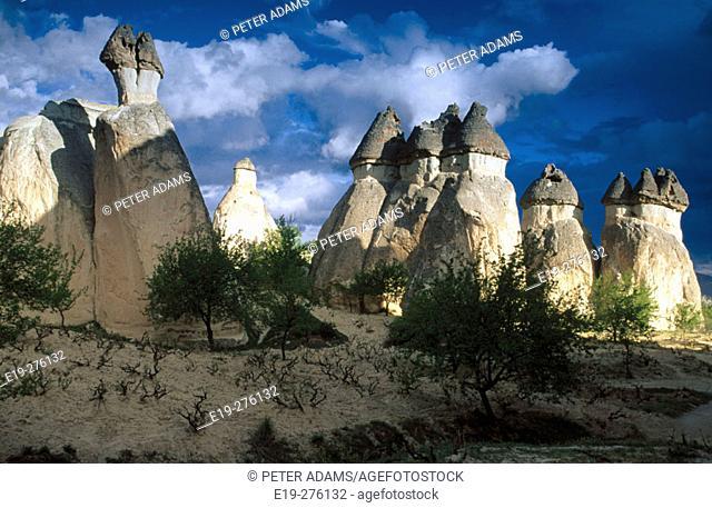 Fairy chimneys. Cappadocia. Turkey
