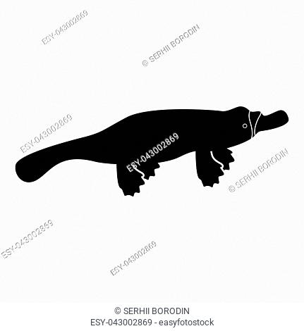 Platypus or duckbill icon icon black color vector illustration isolated