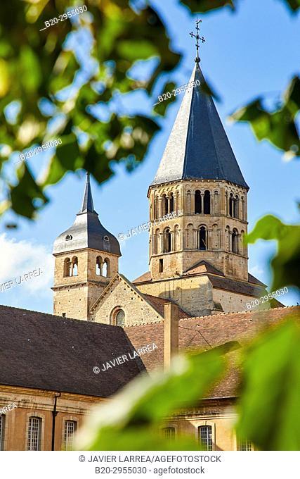 Cluny Abbey, Cluny, Saone-et-Loire Department, Burgundy Region, Maconnais Area, France, Europe