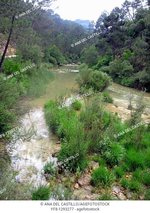 Borosa river source in Sierra de Cazorla Segura y Las Villas Nature reserve, Jaen province, Andalusia, Spain, Europe