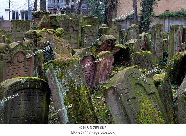 Jewish cemetery Battonnstrasse, it is the oldest jewish cemetery in Frankfurt, Frankfurt am Main, Hesse, Germany, Europe