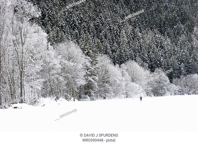 Jogger runs through stunning snowy winter landscape