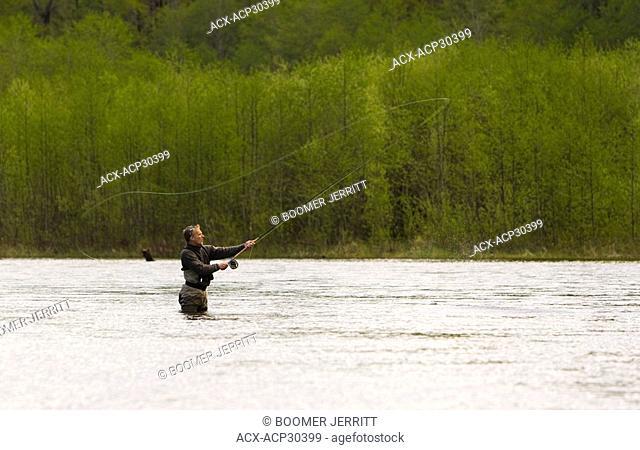 A flyfisherman casts for Steelhead in the Salmon River near Sayward. Sayward, Northern Vancouver Island, British Columbia, Canada