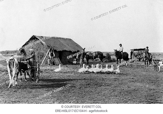 Immigrant's home of primitive construction in rural Argentina, with men, women, and children in front of house, with horses, cattle, and geese