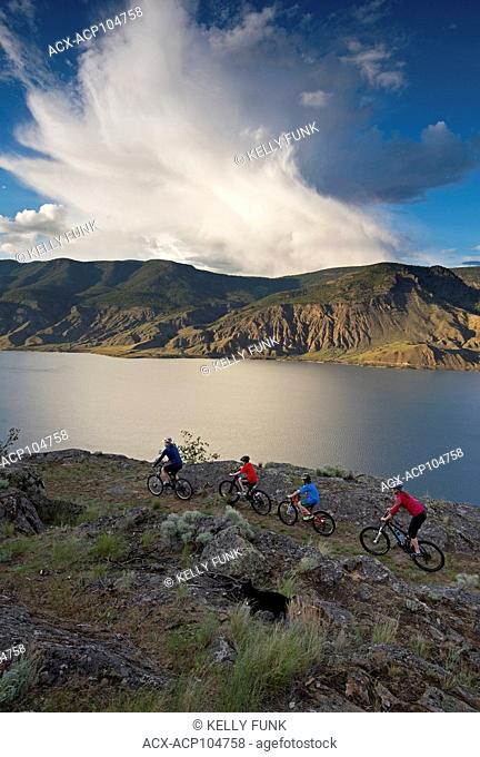 A group of mountain bikers rides a ridge trail over Kamloops lake, west of Kamloops, Thompson Okanagan region, British Columbia, Canada