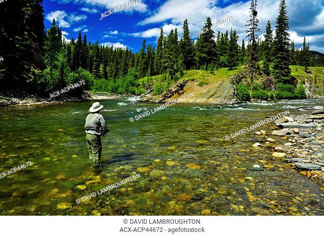 Man fly fishing, Oldman River, Alberta, Canada