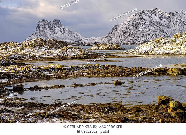 Coastline with rocks, Stamsund Vestvågøy, Lofoten, Norway