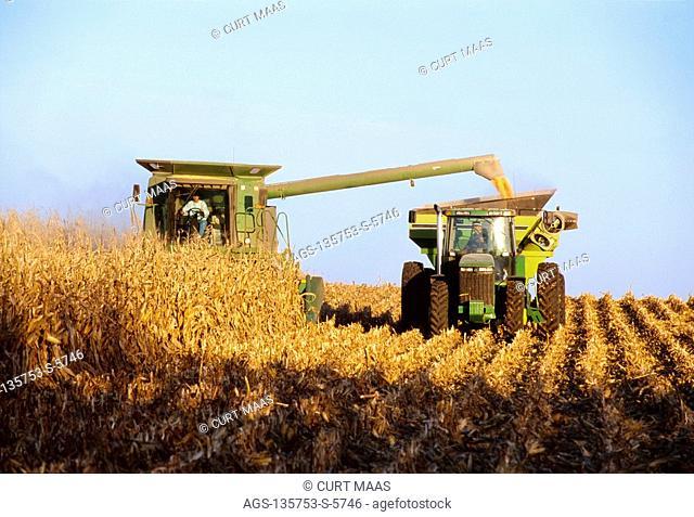 Agriculture - Combine harvesting grain corn and unloading corn into a grain wagon 'on-the-go' / Iowa, USA