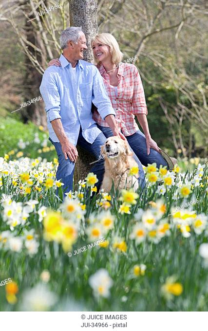 Smiling senior couple with dog leaning against tree trunk in sunny daffodil field