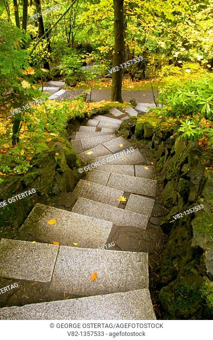 Stairway in Natural Garden, Portland Japanese Garden, Washington Park, Portland, OR