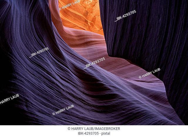 Colourful sandstone formations, Lower Antelope Canyon, Slot Canyon, Page, Arizona, USA