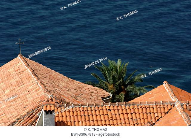 roofs in front of the sea, Serbia-Montenegro, Montenegro, Perast