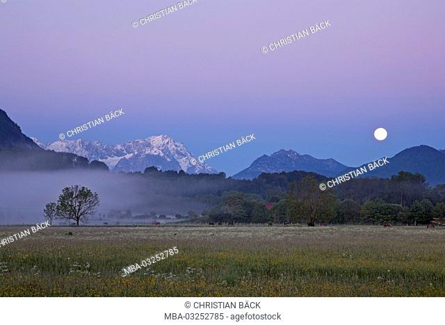 View to Zugspitze, Schwaiganger, Ohlstadt, Upper Bavaria, Bavaria, Germany