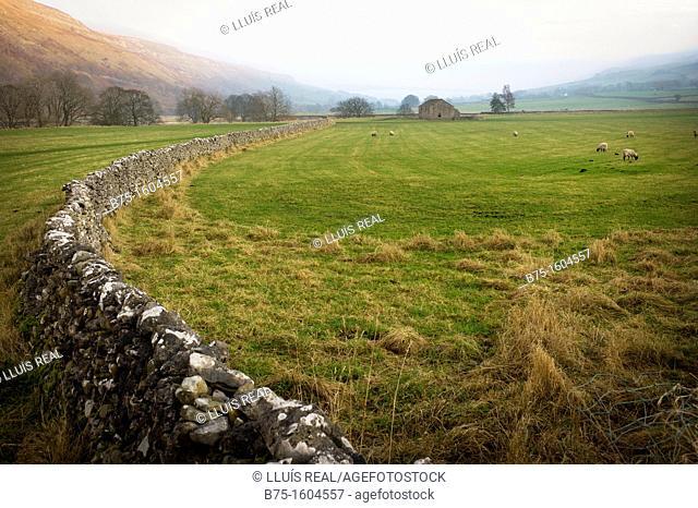 Landscape, Yorkshire Dales, England, UK