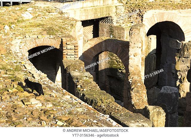 Interior closeup detail of he Colosseum or Coliseum, also known as the Flavian Amphitheatre, with the below ground level hypogeum, Rome. Lazio. Italy
