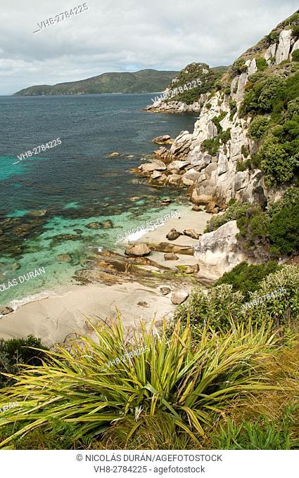 Coast in Rakiura National Park. Stewart Island. New Zealand