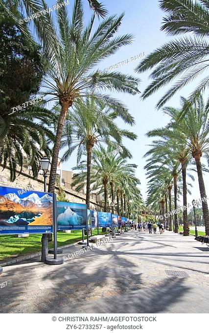Mountain photo exhibition on the Paseo Maritimo city streets on a sunny summer day in August 2016 in Palma de Mallorca, Spain