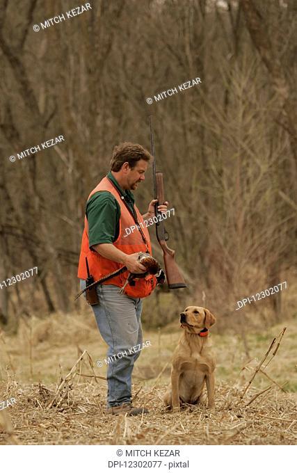 Upland Bird Hunter Training Puppy