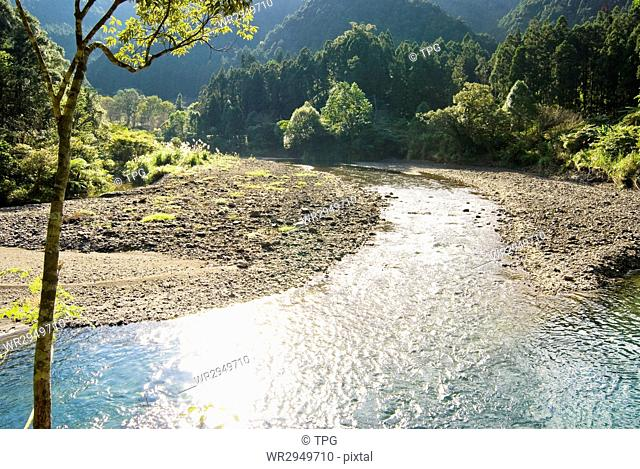 River come from forest with wide water surface