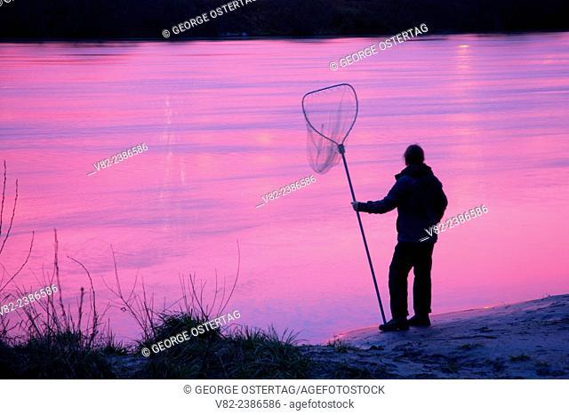 Smelting on Cowlitz River at dawn, Gearhart Gardens Park, Longview, Washington