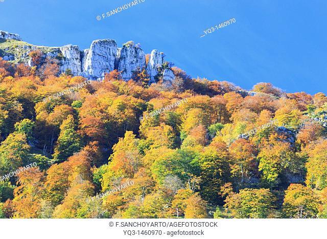 Asón mountain pass in autumn, Cantabria, Spain