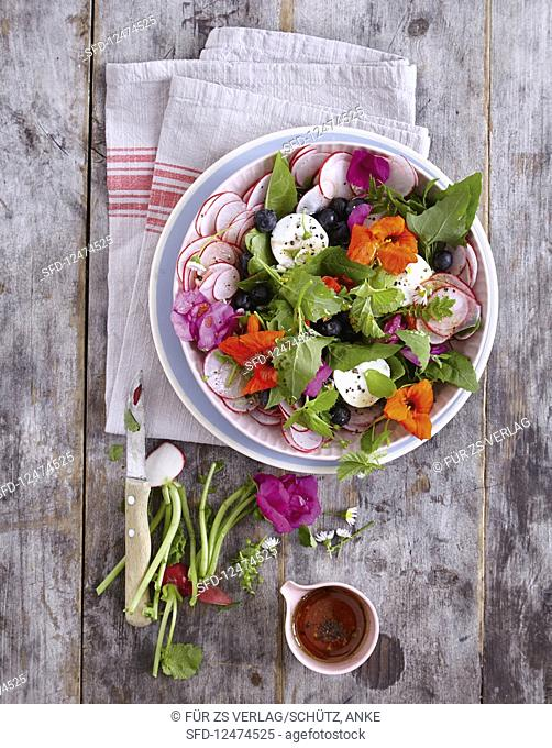 Wild herb salad with goat's cheese and blueberries (low carb)