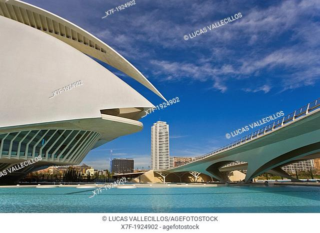 Detail of Palacio de las Artes Reina Sofía,City of Arts and Sciences by S  Calatrava  Valencia  Spain