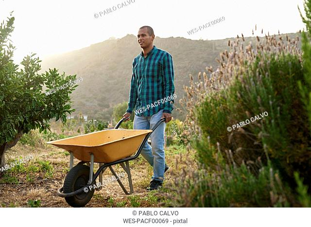 Young farmer pushing a wheelbarr