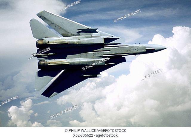 F-14 Tomcat (U.S. Navy)