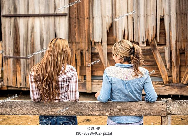 Two young women leaning on fence, rear view