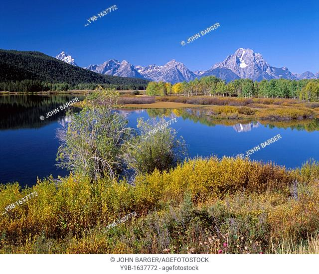 Mt Moran, right, and the Teton Range rise beyond early autumn colors at Oxbow Bend of the Snake River, Grand Teton National Park, Wyoming, USA