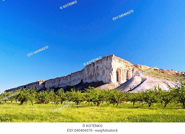 Summer landscape with a white rock in the valley of the sun in the morning. Crimea, Ukraine
