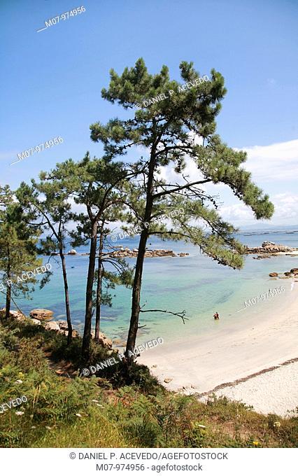Area Grande Beach, O Grove, Galicia, Spain, Europe