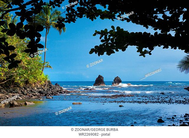 View of the beautiful shore from the tropical forest