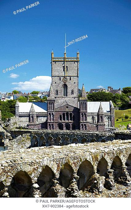 St Davids Cathedral viewed from Bishops Palace, St Davids, Pembrokeshire, Wales, UK