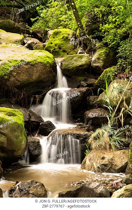 A small stream in the jungle in the Atitlan Nature Reserve near Panajachel, Guatemala, cascades over the moss-covered rocks. Small 3-tiered waterfall