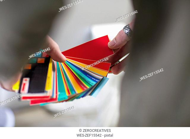Close-up of man holding colour swatches in office
