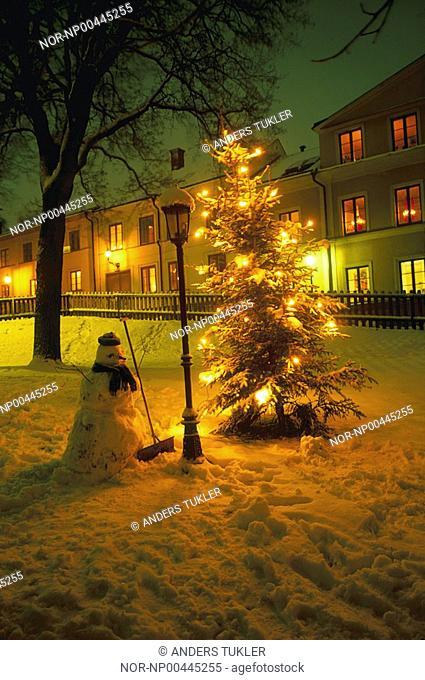 A christmas tree with lights on snow
