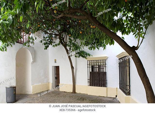 Alley, Cordoba. Andalucia, Spain