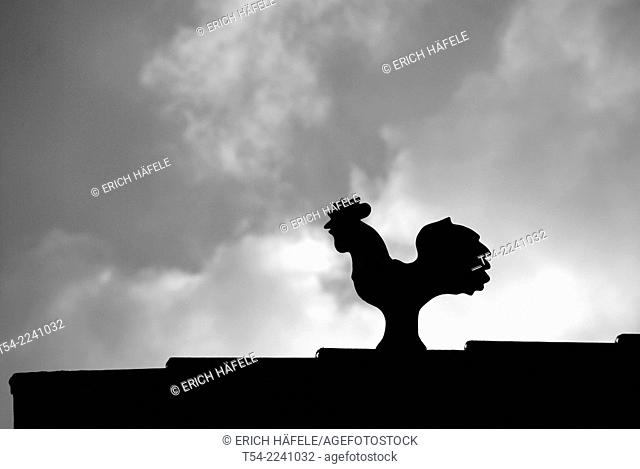 Silhouette of a weather vane on a house roof