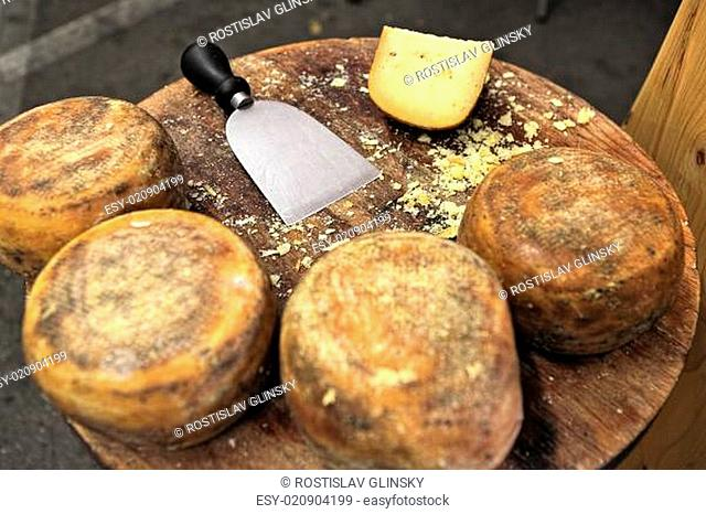 Small wheels of pecorino and cheese knife on wooden table