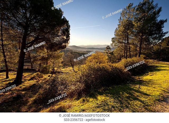 Hornillos gorge in the Sierra de Gredos. La Adrada. Avila. Castilla Leon. Spain. Europe
