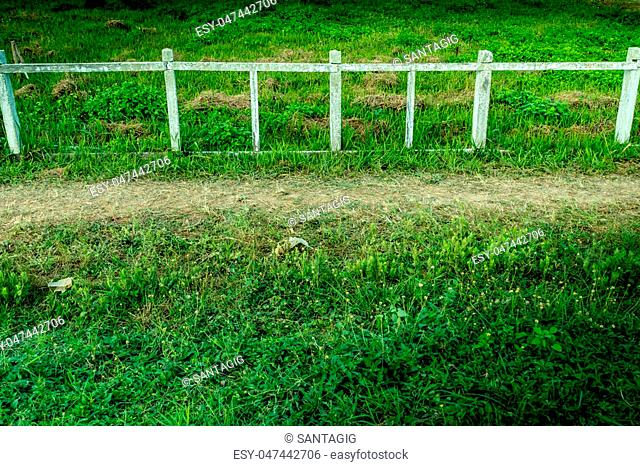 Perspective of Old Concrete and wood fence with green grass