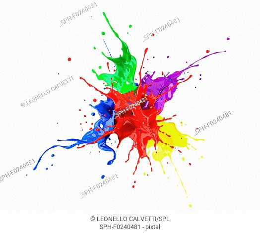 Red, blue, violet, yellow and green paint splash explosion, splashing against one another. Isolated on white